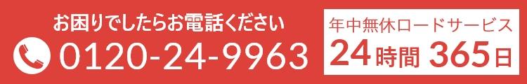 0120-24-9963